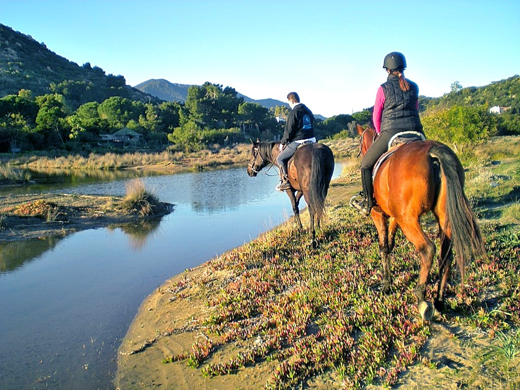 manuela-cavalli